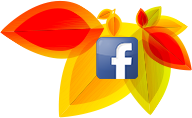 facebook orange outan