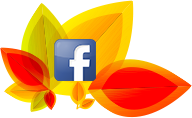 facebook orange outan